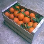 Caja de naranjas de 15 kg